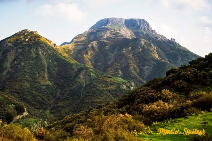 Mount Scuderi, Fiumedinisi and Mount Scuderi Orientated Nature Reserve, Sicily, Italy.